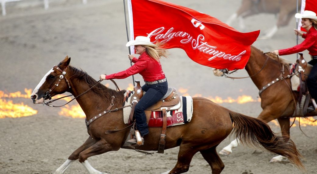 Calgary Stampede 2019 Blazing Saddle Western Display